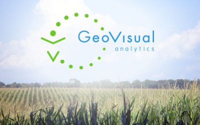 GeoVisual Analytics founded